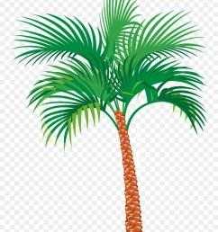 palm tree illustration clipart palm trees clip art [ 900 x 1220 Pixel ]