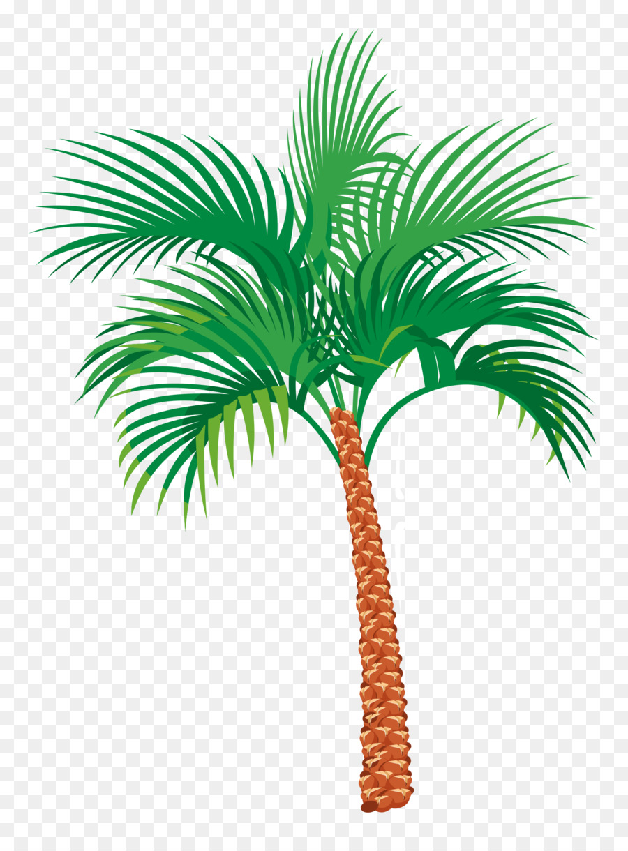 hight resolution of palm tree illustration clipart palm trees clip art
