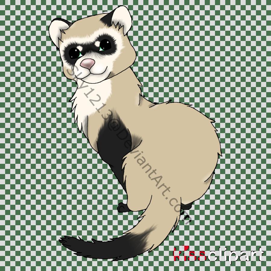hight resolution of ferret clipart ferret stoat cat