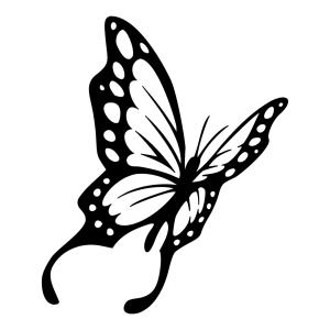 butterfly drawing tattoo farfalla side farfalle butterflies tattootribes tatuaggio transparent transformation monarch wings tattoos soul pngio outline drawings stencil clipart