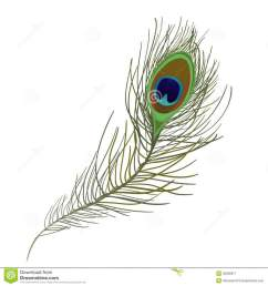 peacock feather single clipart feather clip art [ 900 x 962 Pixel ]
