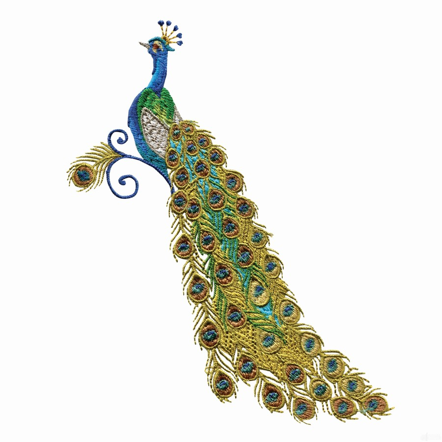 hight resolution of download new embroidery peacock design clipart machine embroidery design pattern feather