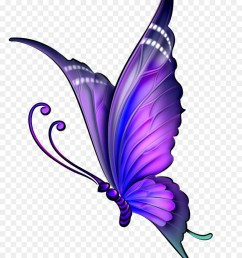 butterfly drawing with color clipart butterfly drawing clip art [ 900 x 1200 Pixel ]