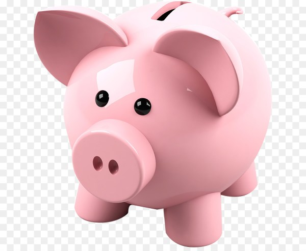 piggy bank # 66