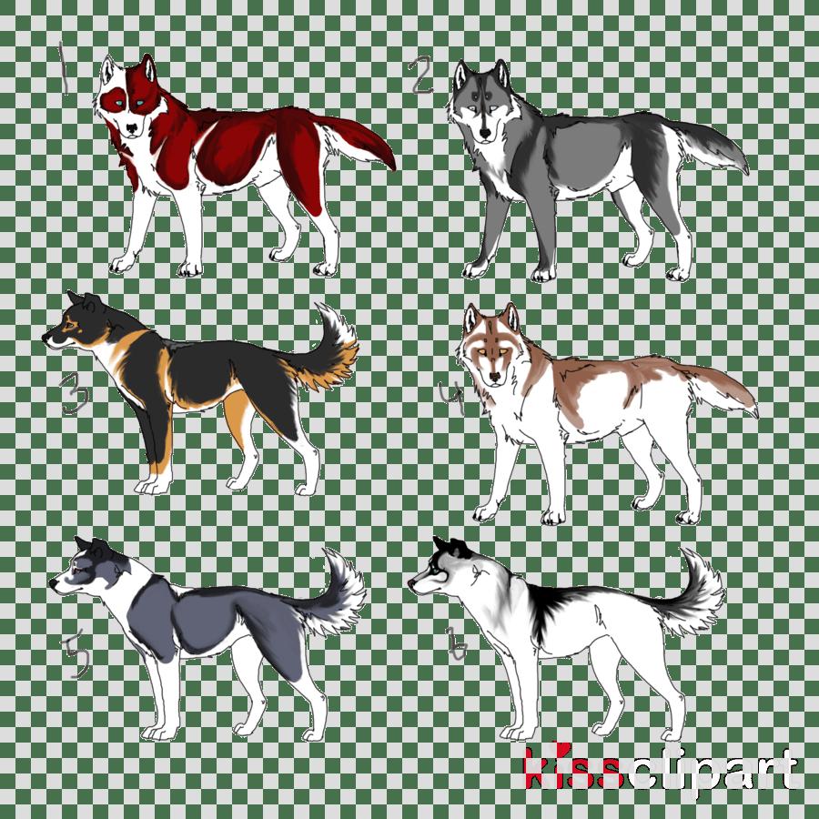 medium resolution of sled dog clipart dog breed siberian husky seppala siberian sleddog