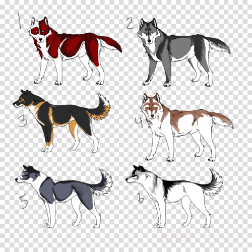 small resolution of sled dog clipart dog breed siberian husky seppala siberian sleddog