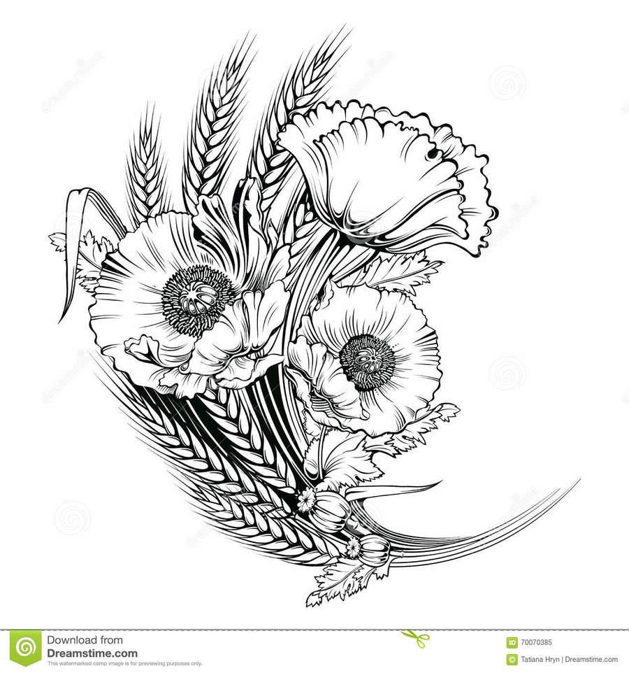 medium resolution of download poppy clipart floral design poppy flower