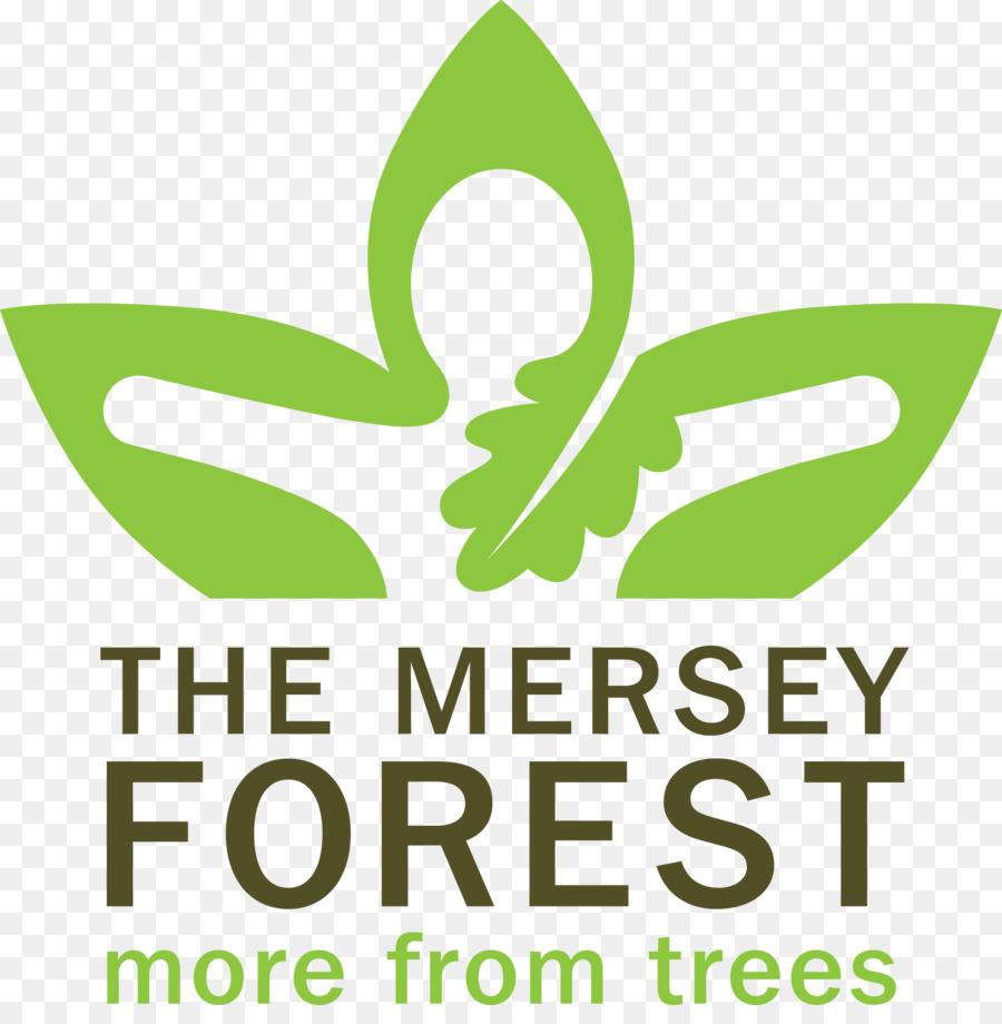 medium resolution of forest clipart leaf logo clip art