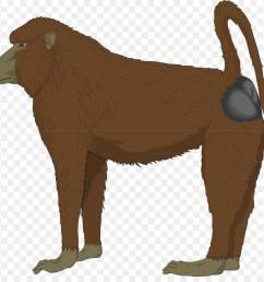 baboon clipart mandrill ape clip art [ 900 x 880 Pixel ]