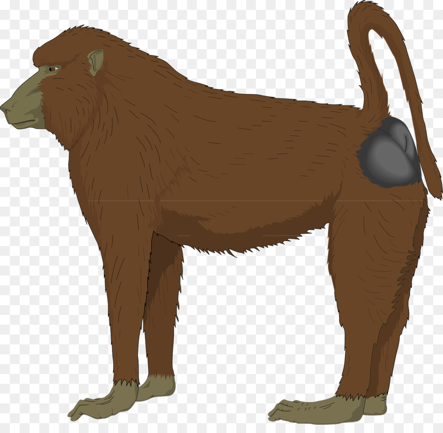 medium resolution of baboon clipart mandrill ape clip art