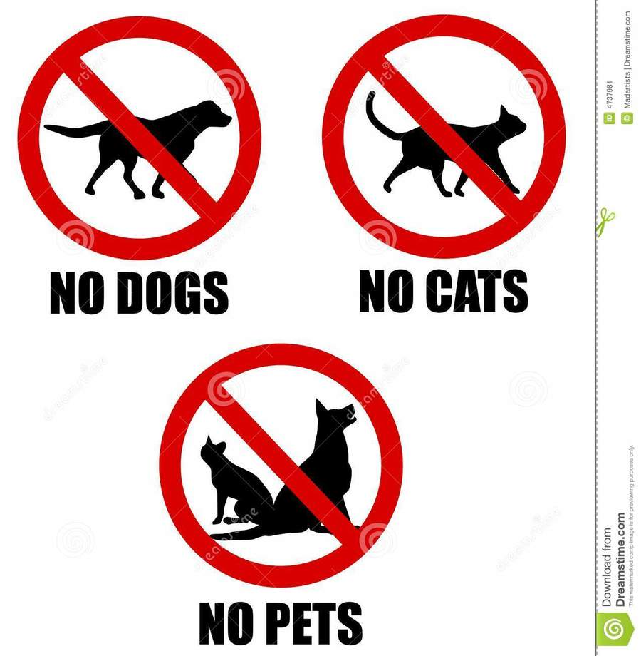 medium resolution of pets banned clipart dog clip art