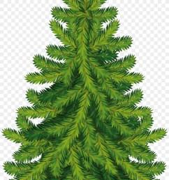 christmas tree clipart pine tree christmas day [ 900 x 1320 Pixel ]