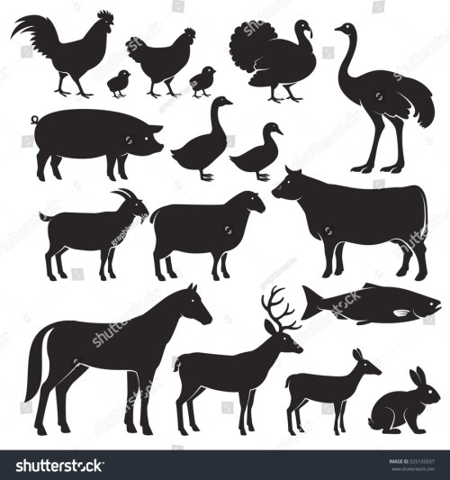 small resolution of animal silhouette clipart