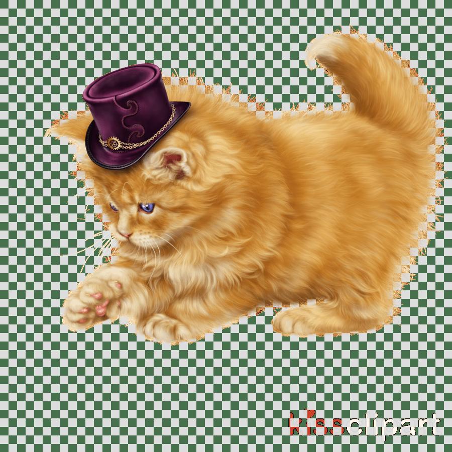 medium resolution of cat clipart persian cat kitten munchkin cat
