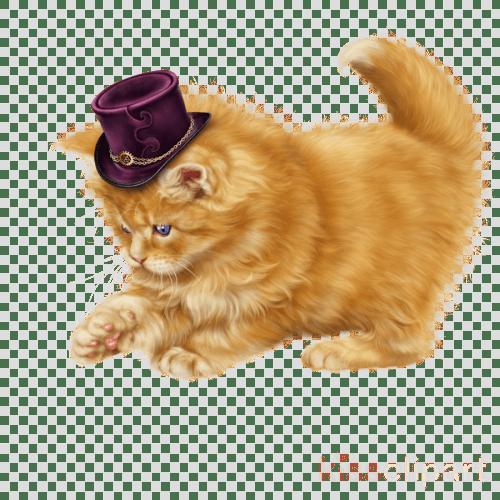 small resolution of cat clipart persian cat kitten munchkin cat