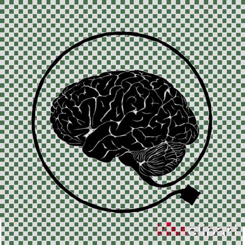 small resolution of human brain clipart human brain brain damage