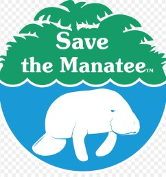 save the manatee clipart save the manatee club manatee conservation african manatee [ 900 x 920 Pixel ]