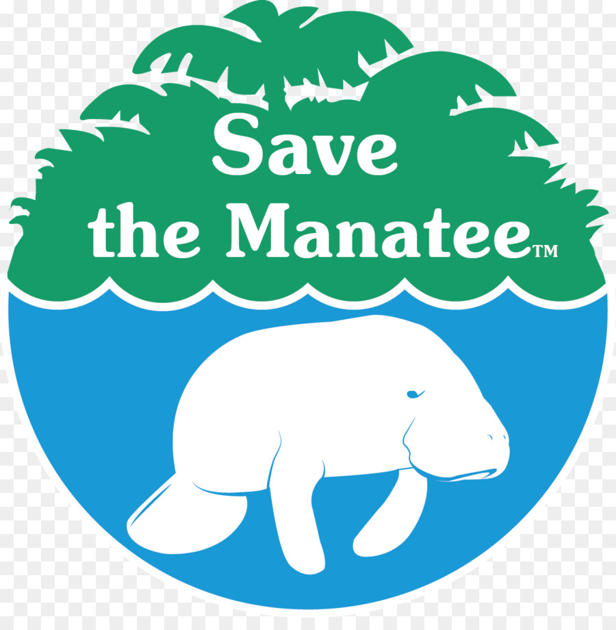 hight resolution of save the manatee clipart save the manatee club manatee conservation african manatee