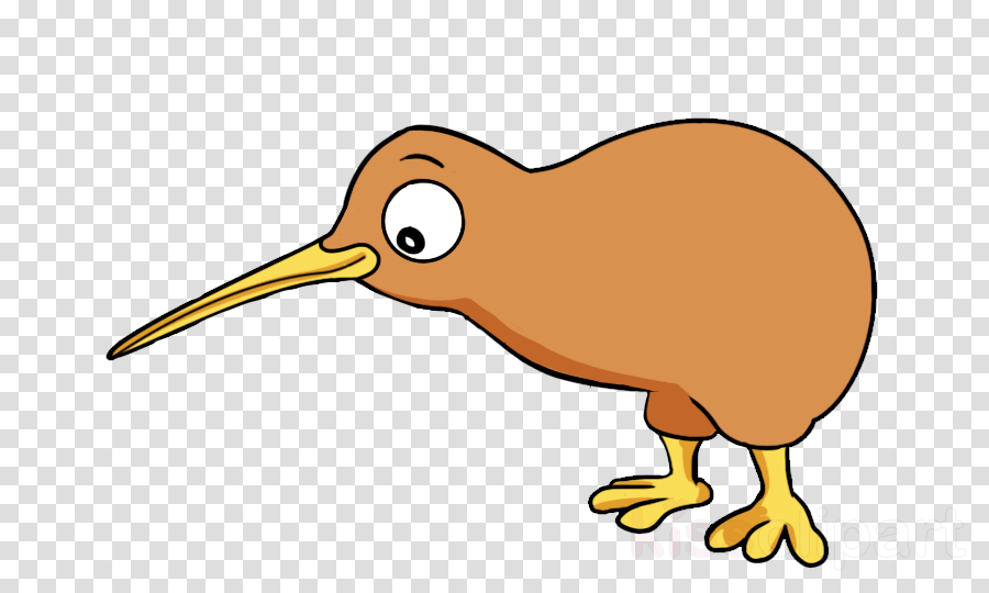 Kiwi Bird Clipart Clipart Bird Drawing Cartoon Transparent Clip Art