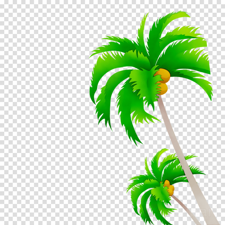 hight resolution of free vector palm tree clipart coconut palm trees