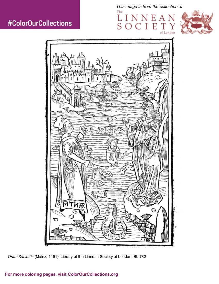 The Linnean Society of London Coloring Book – #Color Our