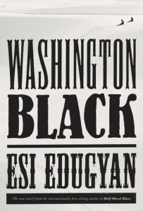 cover art for the book Washington Black