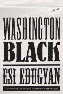cover art for the book Washington Black