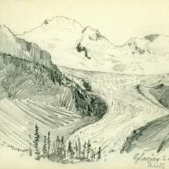 Sketch Diagram Online Labelled Of Root Hair Cell A. P. Coleman Exhibition   Rockies Exploration Mount Brown (part 1 4)