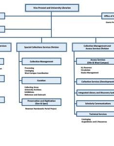 Organizational chart also university libraries washington in rh library wustl