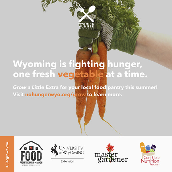 Hand holding bunch of carrots. Text reads Wyoming is fighting hunger, one fresh vegetable at a time. Grow a Little Extra for your local food pantry this summer! Visit nohungerwyo.org/grow to learn more.