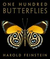 Cover of One Hundred Butterflies