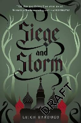 Cover of Siege and Storm.
