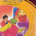 Kala Burqa Jal Raha Tha by Inayatullah Download Free Pdf