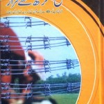 Fateh Garh Se Farar By Inayatullah Pdf Download