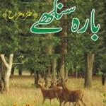 Bara Singhay By Ata Ul Haq Qasmi Pdf Free