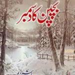 Bachpan Ka December by Hashim Nadeem Free Pdf