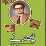 Phundnay Afsane By Saadat Hasan Manto Pdf