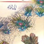 Ibn ul Waqt By Deputy Nazir Ahmad Pdf Download