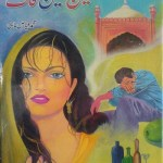 Ain Sheen Qaaf Novel by Fayyaz Mahi Pdf