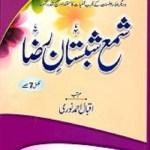 Shama Shabistan e Raza By Iqbal Ahmad Noori Pdf