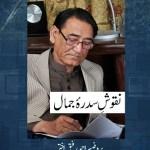 Naqoosh e Sidra Jamal By Prof Ahmed Rafique Akhtar Pdf