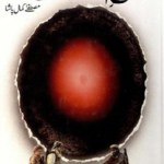 Fatah e Afghanistan By Mustafa Kamal Pasha Pdf