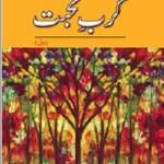 Karb e Mohabbat Novel By Fehmi Firdos Pdf