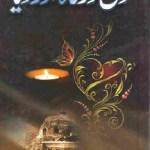 Dil Dargah Aur Diya Novel By Sajida Habib Pdf