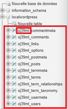 Tables et préfixe WordPress