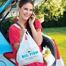 Ultra-Prime Food Service Bags - Novolex Hilex (hrz print)