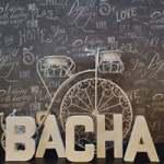 Punto de lectura BACHA.