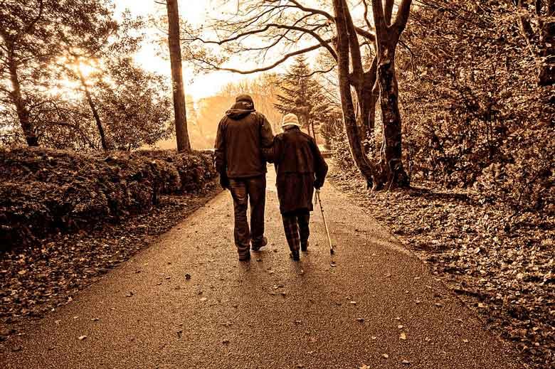 Dos abuelos se pierden en un bosque