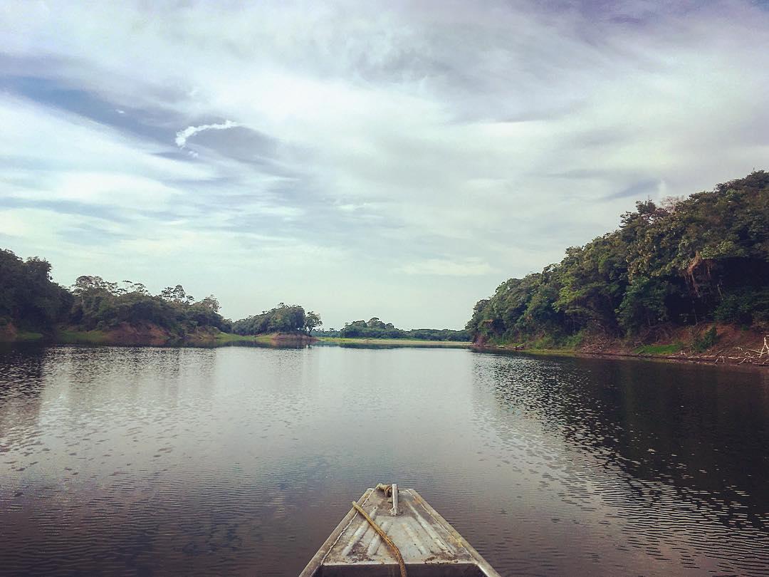 Rivière Urubu, à deux-cent-cinquante kilomètres de Manaus, État d'Amazonas, Brésil.