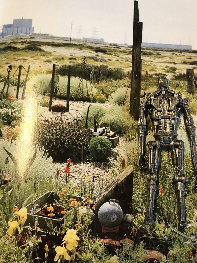 T-800 (3)_Il giardino di Derek Jarman_Libri Senza Gloria